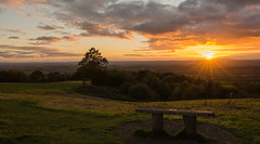 Going....Going ..... (williamrandle) Tags: bench clent clenthills northworcestershire worcestershire england uk aurtumn sunset lowlight glow trees landscape outdoors clouds shadows light nikon d7100 sigma1835f18art grass tree sky