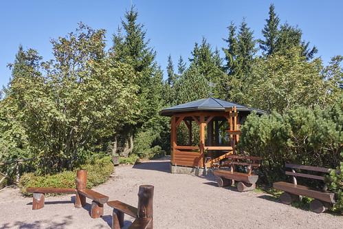 Pfanntalskopf im Rennsteiggarten Oberhof