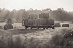 Round Bales (Jenna.Lynn.Photography) Tags: lonely bright rurallandscape pastel land ground hay bale bales straw field blackandwhite black white bnw bw sun rays sunrays ray sunny grass farm farming farmscene scenery landscape landscapephotography tree sky forest wagon hauler trailor hill hills bush bushes summer fall autumn leaves roundbales roundbale strawbale strawbales rural contrast sunset nature light old new dof history canon natur outside agriculture flickr day evening glow feed baler haybaler farmer wheel wheels oldwagon flat flatbed hayhauler