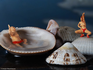 Macro Monday  #Zodiac - Virgo greets Aquarius / Jungfrau grüßt Wassermann