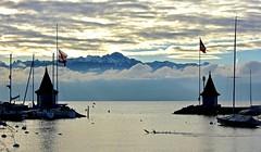 Non, le ciel n'est pas toujours bleu ;-) (Diegojack) Tags: morges vaud suisse paysages léman lac tours port foulques niuages brumes brume alpes hautesavoie