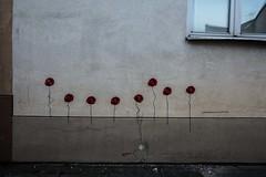 Poppies, Vilnius, Lithuania (Davide Tarozzi) Tags: poppies vilnius lithuania graffiti lituania fiori papaveri