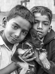 Mumbai 2015 (hunbille) Tags: india mumbai bombay birgittemumbai2lr dadar phool galli phoolgalli flower market bazaar dog puppy pet