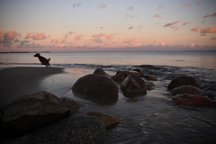 Travemünde (hudsonleipzig80) Tags: travemünde ostsee sunset water nature natur balticsea eveningsun evening holiday schleswigholstein strand promenade canon canoneos1200d eos1200d 1200d umwelt umweltschutz outdoor