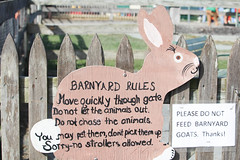 Barnyard Rules (BowenGee) Tags: clarksfarmellicottcity clarks farm ellicott city howard county elioak goats goat bunnies bunnie bunny bunnys rabbit rabbits cows cow sheep pigs pig emu horses horse donkey enchanted forest animals hayrides baby