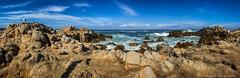 Coastal scenes (Margret Maria Cordts) Tags: pacificgrove california unitedstates us