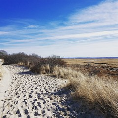 Sandy_Neck_Beach_Park (MA CZM Coast Guide Online) Tags: barnstable sandyneckbeachpark beach czm macoastguide