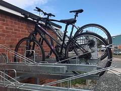 cycle-racks.com-Two-Tier-Cycle-Racks-1