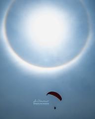 Fly Under The Halo | Phenomenon (Muktasyaf AnNamir) Tags: paragliding paramotor tandemfly silhouette halo sun sunhalo sundog fenomenalangit subhanallah tabarakallah nikon annamir annamir2u paraglidingmalaysia kkb huluselangor kualakubu tamron