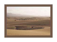 Fuerteventura_JP27246 (Jordane Prestrot) Tags: jordaneprestrot fuerteventura désert desert desierto parcnatureldecorralejo parquenaturaldecorralejo naturalparkofcorralejo dunes dunas sable sand arena