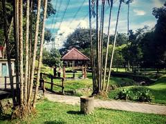 https://foursquare.com/v/templer-park-waterfall/4dfd86957d8b30508018ceda #travel #holiday #travelMalaysia #holidayMalaysia #green #waterfall #Asia #Malaysia #selangor #rawang #旅行 #度假 #马来西亚度假 #马来西亚旅行 #绿色 #瀑布 #nature #大自然 #亚洲 #马来西亚 #雪兰莪 #发现大马 #FoundinMalays