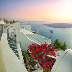 Villa Sea Horse, Santorini Island, Greece (fesign) Tags: architecture bougainvillea buildingexterior builtstructure clearsky colours cyclades day europe firá flowers greece greekculture greekislands hotel incidentalpeople mediterraneanculture outdoors photography pink resort santorini sea square sunset town tradition traveldestinations vacation