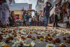 Rajasthan - Pushkar - Street Festival-2