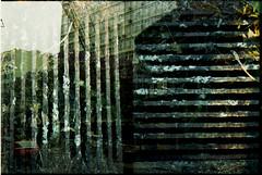 Gradeado (terencekeller) Tags: doubleexposure duplaexposição 2cameras1film 2câmeras1filme double exposition dupla exposição canon canondemiee17 demi ee17 canonetql17giii canonet ql17 giii 30mm 40mm halfframe meioquadro half meio kodak proimage terencekeller analogue epson v370 35mm film twocamerasonefilm duascâmerasumfilme