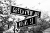Greenview Ave and Wiggins St (Triborough) Tags: nj newjersey mercercounty princeton
