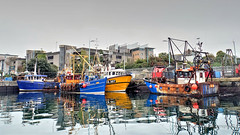 Working Boats (PAUL YORKE-DUNNE) Tags: plymouth suttonharbour harbour trawlers workingboats tidal basin fishingboats reflections