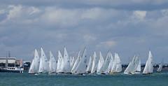 Cowes Week 2017 (pauldbrown) Tags: cowesweek cowes iow isleofwight regatta sail sailing sailingregatta solent yacht yachtrace