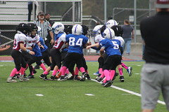 Bethel Football 8u (teddiferraro) Tags: bethel wildcats games tackling maroon game family families team coaches black practice coach boys brothers football cheer cheerleader cheerleaders friends friend eight eights plainville blue devils bluedevils fun girls white 8u