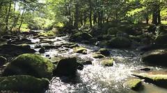 La Sédelle - Crozant - Creuse - Nouvelle-Aquitaine - France (vanaspati1) Tags: la sédelle crozant creuse nouvelleaquitaine france vanaspati1 nature rivière river europe eau water ralenti paysage