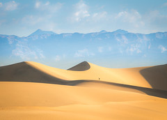 The way up. (andreassofus) Tags: deathvalley mesquite mesquiteflatsanddunes dunes sanddunes sand desert nevada southwest america usa travel travelphotography silhouette person perspective summer summertime heat hot landscape nature grandlandscape scale