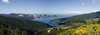 Panorama of Nowhere (Lomasi_) Tags: neuseeland new zealand panorama somewhere road between whatamango bay robin hood irgendwo nirgendwo gelb blau grün yellow flowers blumen himmel natur nature photomerge 35mm nikon d5100 roadtrip vanlife van