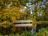 Herbst  -  Autumn (achim-51) Tags: holz baum wasser park herbst autumn brücke brigde spiegelung reflection panasonic dmcg5 lumix reflections spiegelungen
