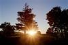 Shooting Rays (kevinfoxphotography53) Tags: sunrise ebparksok kevinfoxphotography quarrylakes quarrylakesregionalpark fremont california picnic area kevinfoxphotogrpahy