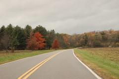 Fall (historygradguy (jobhunting)) Tags: ny newyork upstate fall autumn fallcolors stillwater saratoganationalhistoricalpark road street