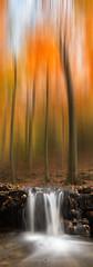 Autumn Trails (Olivier Rocq ᕈhotography) Tags: waterfalls waterfall ninglinspo belgique belgium autumn fall falls automne cascades filés arbres trees vertorama