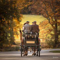 Fine day for a ride, don't you think? (kenrem) Tags: 1000acres 24mmto105mm autumn beauty canon canon5d canon5dmarkiv chipmunks clouds country de delaware enchantedwoods fall foliage forests garden grass hawks henryfrancisdupont land landscape leaves library markiv meadows museum naturalistic nature october ponds rollinghills sigma sigmaart sigmaartlens sky streams sun trees winterthur woods dupont