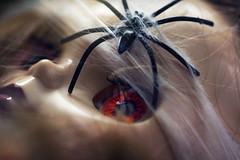 spider attack (Sabinche) Tags: macromondays halloween blythe doll primadollyashlette canoneos5dmarkiii sabinche