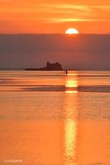 els feligresos de la catedral (manel pons) Tags: manelpons deltadelebre albada amanecer sunrise torredesantjoan badiaelsalfacs