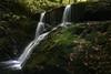 Enamorada de los saltos de agua  del río infierno (lesxanes) Tags: cascada río bosque agua waterfall river forest asturies asturias