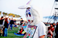 Some people celebrate Halloween every day. (kirstiecat) Tags: bunny sadness costume california america coachella fan crowd melvins stranger strange weird