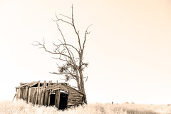 Wretched (garshna) Tags: abandoned ruins ruined monochrome nikon