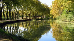 Le canal en automne (LILI 296...trés peu présente) Tags: canal france labège haute garonne reflets