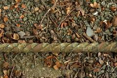 Inexorable (Tony Tooth) Tags: nikon d7100 tamron 2470mm stilllife timeline metalrod metalbar grave cemetery leek leekcemetery staffs staffordshire