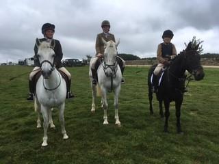 Equestrian Round Up!   News   Tudor Hall School