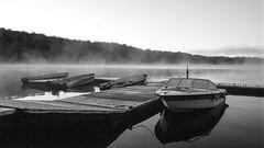 Boats Are Ready to Go (Bill Smith1) Tags: believeinfilm bellalake billsmithsphotography billiebearresort hc110b heyfsc muskoka olympusom2n rolleisuperpan200 zuikomc50f18lens
