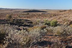 Flora and Fauna Sanctuary (cathm2) Tags: australia nsw brokenhill outback travel roadtrip floraandfauna sanctuary outdoors nature