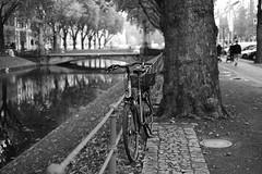 bike@Kö, Düsseldorf 2 (Amselchen) Tags: mono bicycle street streetphotography bnw blackandwhite bokeh blur dof depthoffield kö düsseldorf germany fujifilm xt2 fujifilmxseries fujinon fujifilmxt2 xf35mmf14r