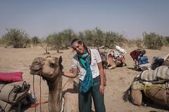 Rajasthan - Jaisalmer - Desert Safari with Camels-26