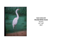 """Florida White Crane • <a style=""""font-size:0.8em;"""" href=""""https://www.flickr.com/photos/124378531@N04/37106283773/"""" target=""""_blank"""">View on Flickr</a>"""
