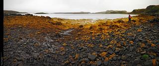 Marea baixa a Skye...