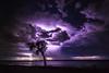 Herron Storm Sunday 22nd October 2017 (picturesbysteve) Tags: 6d ©stephenhumpleby 2017 canon heronpoint october lightning storm night herronpoint thunder 24105 westernaustralia reflection water estuary