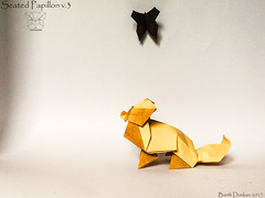 Seated Papillon v.3 - Barth Dunkan. (Magic Fingaz) Tags: anjing barthdunkan chien chó dog hond hund köpek origami origamidog perro pies пас пес собака หมา 개 犬 狗