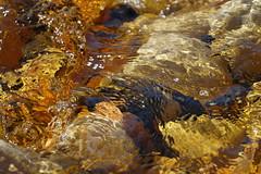 Stream (blachswan) Tags: grampians grampiansnationalpark gariwerd gariwerdnationalpark nationalpark victoria australia stream water