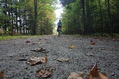 P'tit train du Nord (beyondhue) Tags: p'tit train du nord cycling trail mont tremblant beyondhue path bicycle wood cyclist quebec converted railway explore canada laurentians laurentides recreation tourist