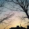 IMG_20170308_123130 (discoveryfahim) Tags: niceweather wallpaper sunset