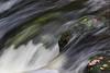2017 272-365 Watersmeet (kayakingjanet) Tags: nationaltrust northdevon watersmeet 2017365 astarterforten